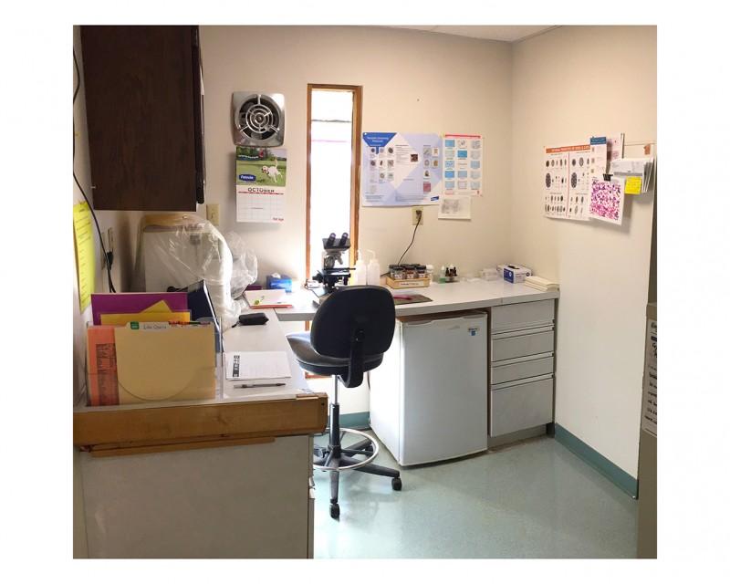 Madison Vet Clinic Webpic 4.jpg